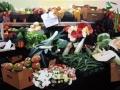 SEGUNDO PREMIO - Exposición de las obras del I Concurso de Pintura Frutos y Flores de La Palma