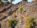 transvulcania-2012-fotos-tony-perez-0-1