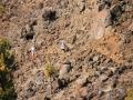 transvulcania-2012-fotos-tony-perez-0