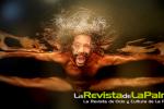 Feria Liberarte 2014 5 1