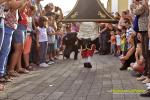 Enanos Bajada de La Virgen 2015 La Alameda 10