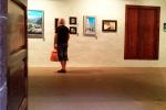 Expo Arte Lustral 2015 Marevi 1