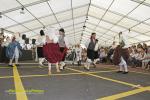 Feria de artesania bajada de la Virgen 2015 18