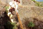 Romeria Bajada Virgen Pino El Paso 15 3068